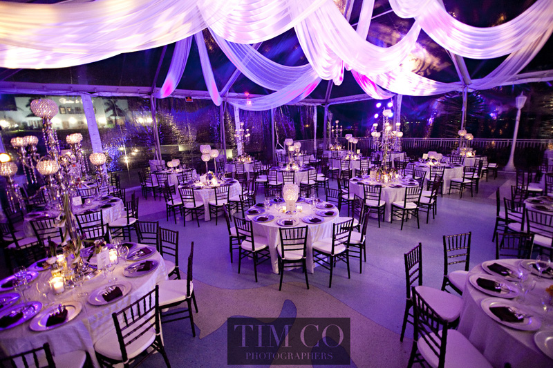 lighting setting mood reception venue importance event tent purple modwedding decorations venues drapery drapes decoration idea designs receptions gorgeous dress
