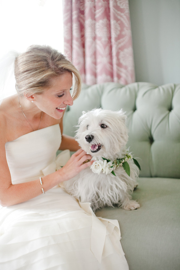 fall-wedding-barr-mansion-dog-with-flower-collar