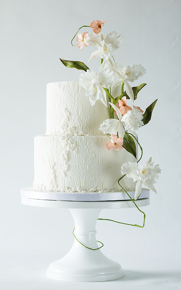 wedding-cake-17-01252014nz